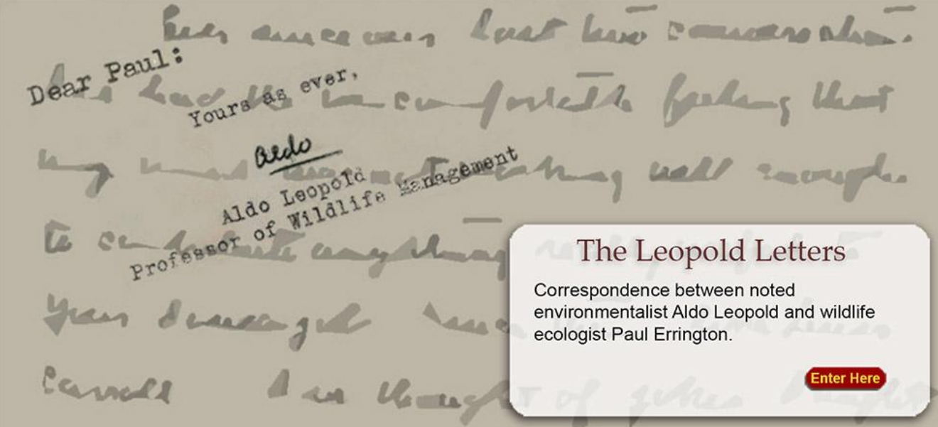 Colored image of a letter written by Aldo Leopold to Paul Errington