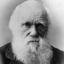 Black and white image of Charles Darwin