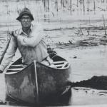 Black and white image of Paul L. Errington canoeing through a marsh
